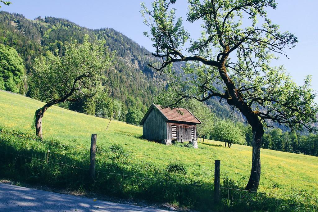 bayrischzell-tannerhof-nadin-brendel